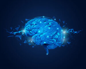 How the sensation of fear starts in our brain and then the brain spreads the message to all other parts of the body.