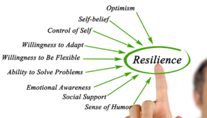 Here is why resilience is an important skill to work on and how you may build it - TDN Blog