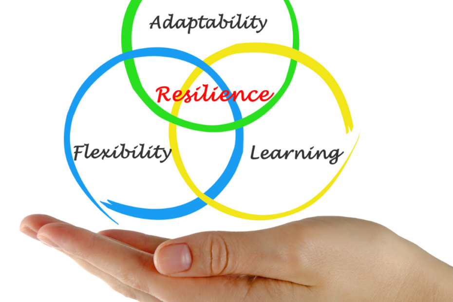 Why resilience is an important life skill & how you can build it - TDN Blog