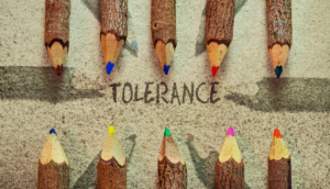 Why resilience is an important life skill & how you can build it - Strengthen your conflict tolerance ability - TDN Blog