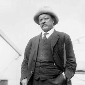 What is self-efficacy and why does it matter - Theodore Roosevelt - TDN Blog
